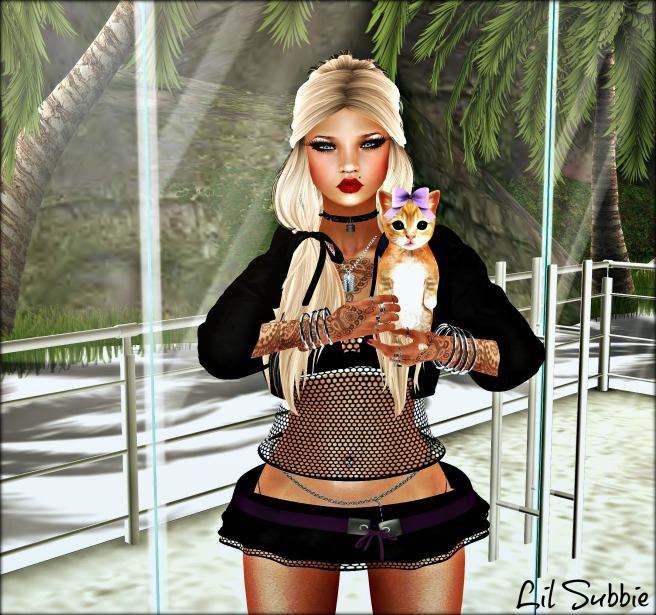 kitty_003-th